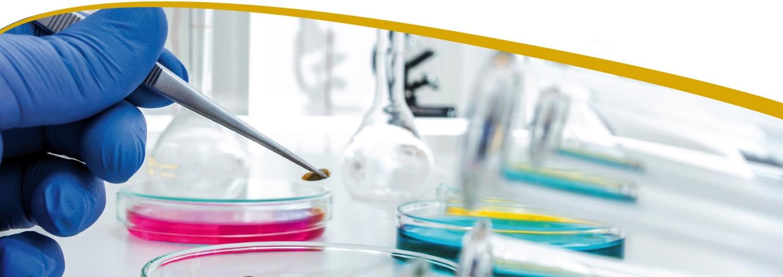 Stellenangebot, Job, Jobbörse, AGES, Österreichische Agentur für Gesundheit und Ernährungssicherheit, Naturwissenschaften, Chemie, Analytik, Biotechnologie